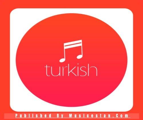 دانلود آهنگ ترکیه ای غمگین